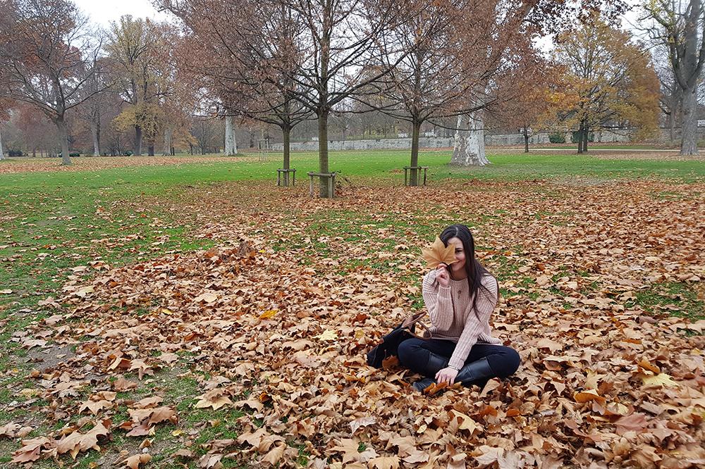 Fall - Otoño
